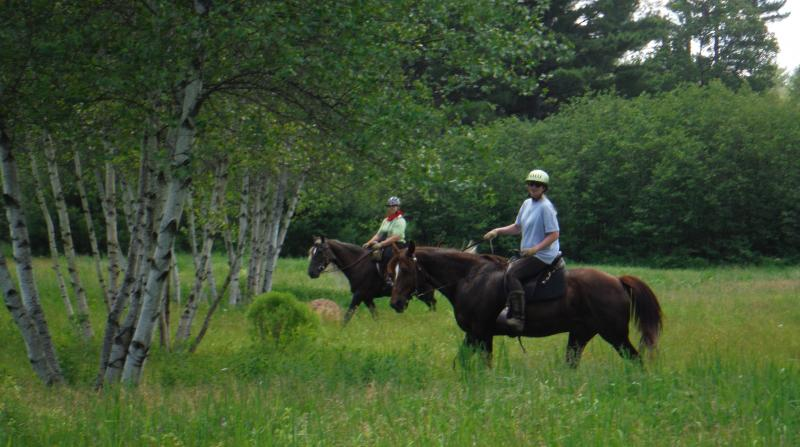 burnt meadow stables trail riding lesson